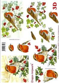 3D Bogen Rotkehlchen - Format A4