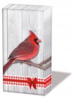 Taschentücher Cardinal
