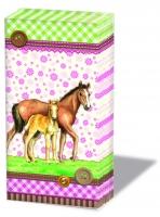 Taschentücher Signed Horses