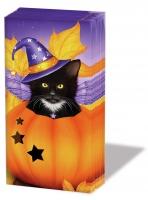 Taschentücher - Halloween Katze