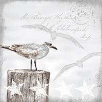 Servietten 25x25 cm - Seagulls