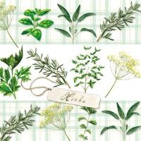 Servietten 25x25 cm - Herbs