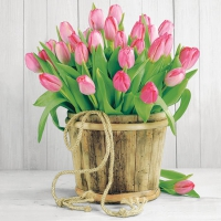 Cocktail Servietten Tulips In Bucket