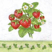 Servietten 25x25 cm - Season Fruit