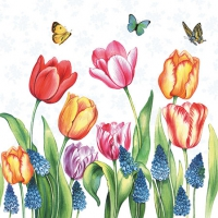 Servietten 25x25 cm - Tulips & Muscari