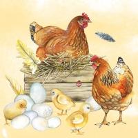 Servietten 25x25 cm - Breeding Chicken