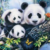 Servietten 25x25 cm - Panda