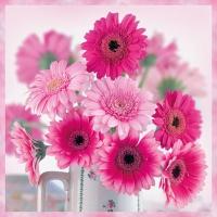 Servietten 25x25 cm - Pink Gerberas