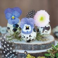 Servietten 25x25 cm - Flowers In Eggs