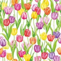 Servietten 25x25 cm - Magic Tulips