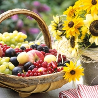 Servietten 25x25 cm - Sunny Fruit