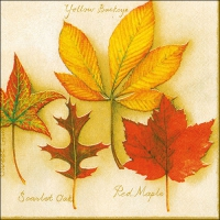 Servietten 33x33 cm - Autumn Leaves Creme