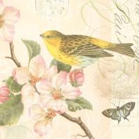 Servietten 33x33 cm - Bird And Blossom