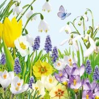 Servietten 33x33 cm - Spring Time