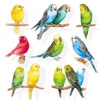 Servietten 33x33 cm - Birdies