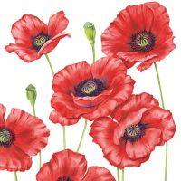 Servietten 33x33 cm - Romantic Poppy