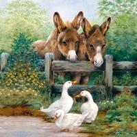 Servietten 33x33 cm - Meeting Friends