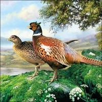 Servietten 33x33 cm - Pheasant