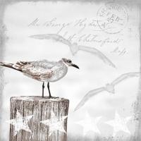 Servietten 33x33 cm - Seagulls