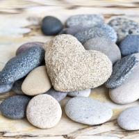 Servietten 33x33 cm - Pebbles