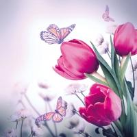 Servietten 33x33 cm - Butterfly & Tulips