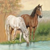 Servietten 33x33 cm - Horses