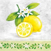 Servietten 33x33 cm - Lemon Branch