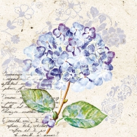 Lunch Servietten Flou d?Hortensia Purple