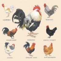 Lunch Servietten Farmyard Hens Cream