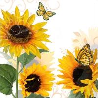Servietten 33x33 cm - Sunny Butterfly