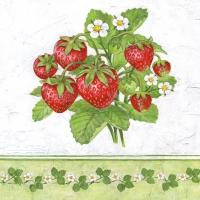 Servietten 33x33 cm - Season Fruit