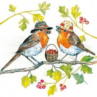 Lunch Servietten Birdie Hats