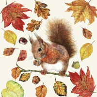 Servietten 33x33 cm - Eating Squirrel