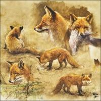 Servietten 33x33 cm - Portraits Of Foxes