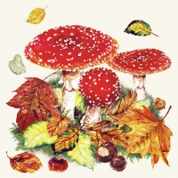 Lunch Servietten Fly Agaric