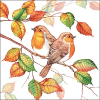 Servietten 33x33 cm - Robins In Autumn