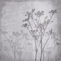 Servietten 33x33 cm - Floral Harmony Grey