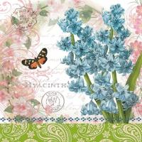 Servietten 33x33 cm - Hyacinth