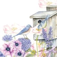 Servietten 33x33 cm - Birdhouse Backyard