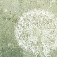 Servietten 33x33 cm - Dandelion Green