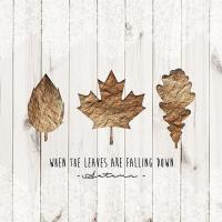 Servietten 33x33 cm - Wenn Blätter fallen