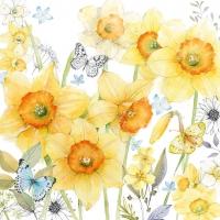 Servietten 33x33 cm - Classic Daffodils