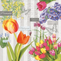 Servietten 33x33 cm - Spring Flowering Grey