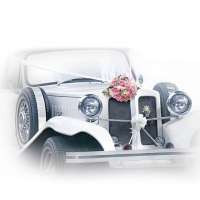 Servietten 33x33 cm - Wedding Car