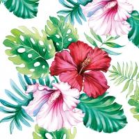 Servietten 33x33 cm - Hibiscus Floral White