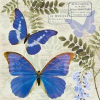 Servietten 33x33 cm - Blauer Morpho