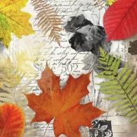 Servietten 33x33 cm - Leaves On Letter