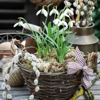 Servietten 33x33 cm - Snowdrops In Basket