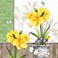 Servietten 33x33 cm - Sunny Spring