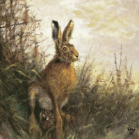 Servietten 33x33 cm - Portrait Of Hare